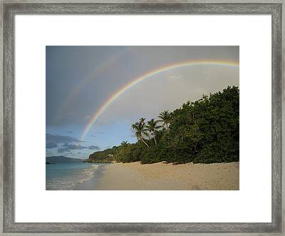 Dreams Really Do Come True Framed Print by Ginger Howland