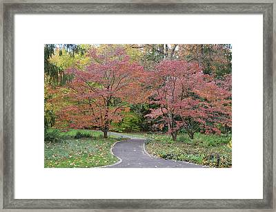 Framed Print featuring the photograph Dreamwalk by Deborah  Crew-Johnson