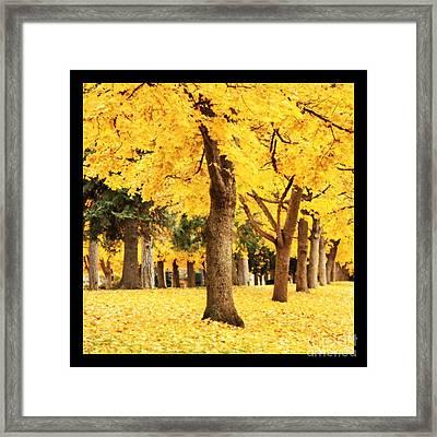 Dreamy Autumn Gold Framed Print