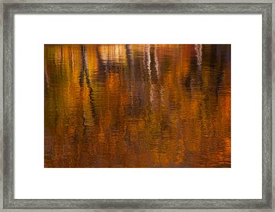 Dreamy Autumn Framed Print