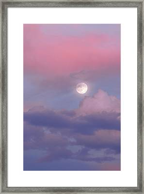Dreamy Framed Print by Chad Dutson