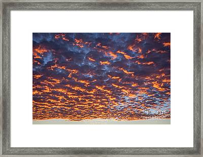 Dreamy Clouds Framed Print