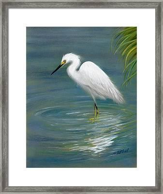 Dreamy Egret Framed Print by Heather Mitchell