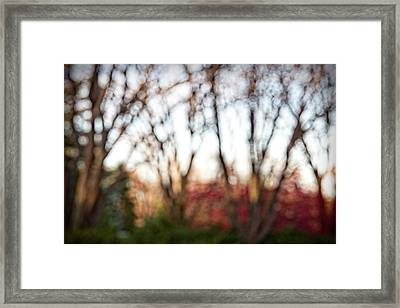 Framed Print featuring the photograph Dreamy Fall Colors by Susan Stone