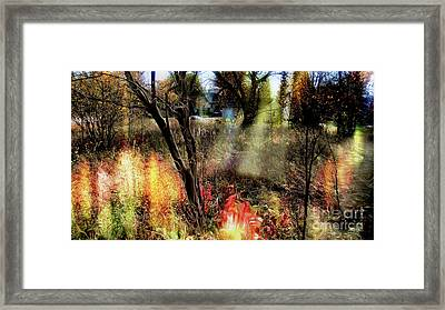 Dreamy Haven 2 Framed Print