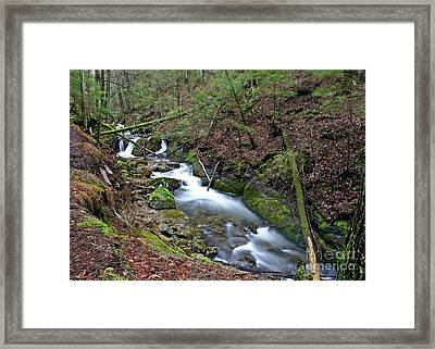 Dreamy Passage Framed Print
