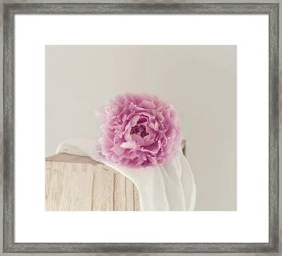 Dreamy Pink Peony Framed Print