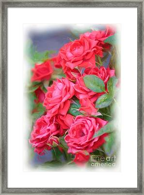 Dreamy Red Roses - Digital Art Framed Print by Carol Groenen