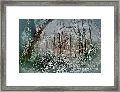 Dreamy Snow Framed Print
