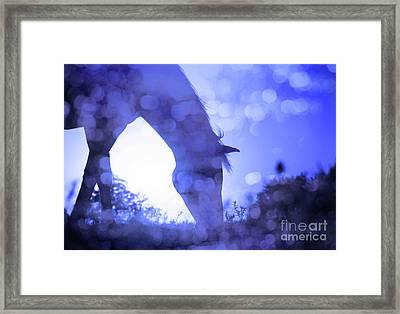 Dreamy Sunrise In Blue Framed Print