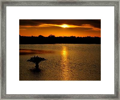 Dreamy Sunset Framed Print by Jennifer A Garcia
