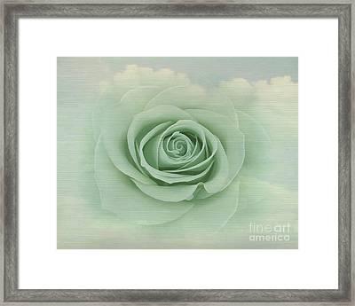 Dreamy Vintage Floating Rose Framed Print by Judy Palkimas