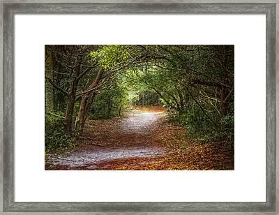 Dreamy Walk Framed Print by Debra and Dave Vanderlaan