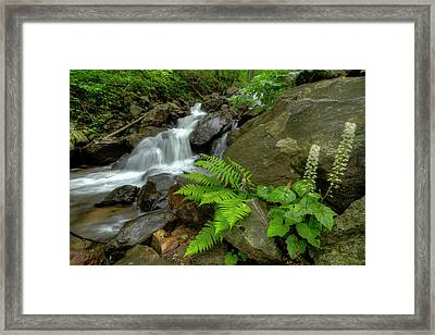 Framed Print featuring the photograph Dreamy Waterfall Cascades by Debra and Dave Vanderlaan