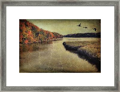 Dreary Autumn Framed Print