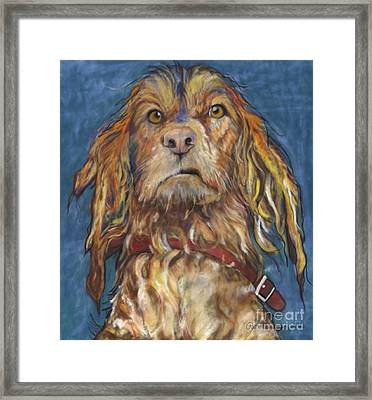 Drenched  Framed Print by Pat Saunders-White