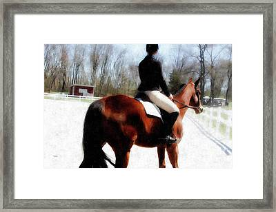 Dressage In Waiting  Framed Print by Steven Digman