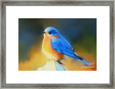Dressed In Blue Framed Print