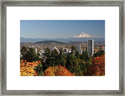 Dressed In Fall Colors Framed Print