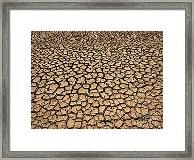 Dried And Cracked Soil In Arid Season. Framed Print by Tosporn Preede