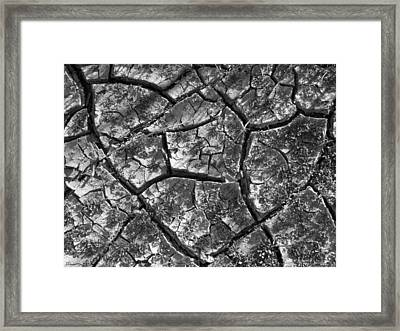 Dried Mud 2 Framed Print by Mike McGlothlen