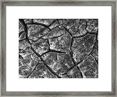 Dried Mud 2 Framed Print by Mike McGlothlen
