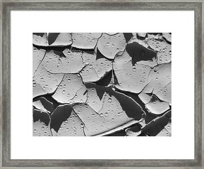 Dried Mud 3 Framed Print by Mike McGlothlen