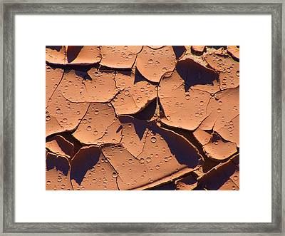 Dried Mud 3c Framed Print by Mike McGlothlen