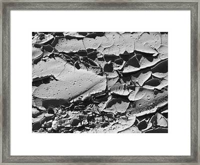 Dried Mud 5 Framed Print by Mike McGlothlen