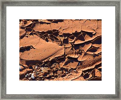 Dried Mud 5c Framed Print by Mike McGlothlen