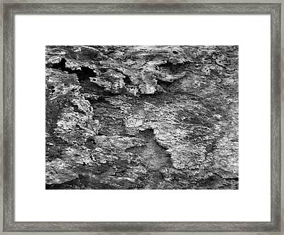 Dried Mud 6 Framed Print by Mike McGlothlen