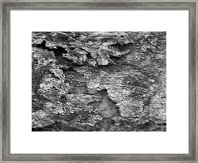 Dried Mud 6 Framed Print by Mike McGlothlen