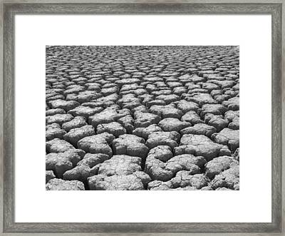 Dried Mud 9 Framed Print by Mike McGlothlen