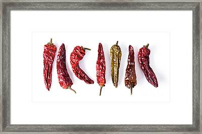 Dried Peppers Lined Up Framed Print
