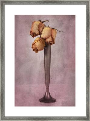 Dried Roses Still Life Framed Print by Tom Mc Nemar