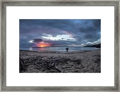 Drift Wood Framed Print by Sean Davey