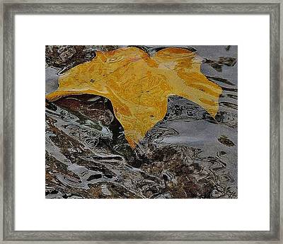 Drifting Away Framed Print by Todd Sherlock