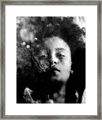 Drifting Dreams Framed Print