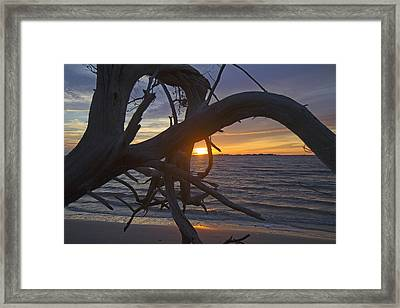 Drifting Thoughts Framed Print by Betsy Knapp