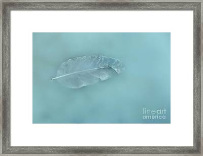 Drifting Through A Dream Framed Print by Masako Metz