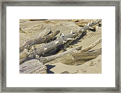 Driftwood And Sand On Popham Beach On The Coast Of Maine Framed Print by Keith Webber Jr