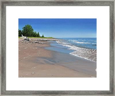Driftwood Beach Framed Print by Kenneth M  Kirsch