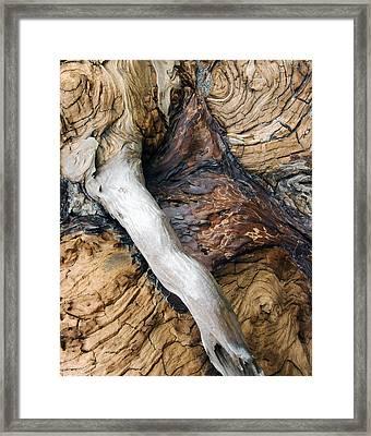 Driftwood Canyon Vi Framed Print by D Kadah Tanaka