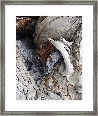 Driftwood Canyon Vii Framed Print by D Kadah Tanaka