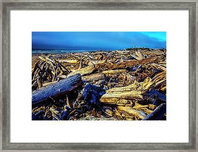 Driftwood Coastline Framed Print by Garry Gay