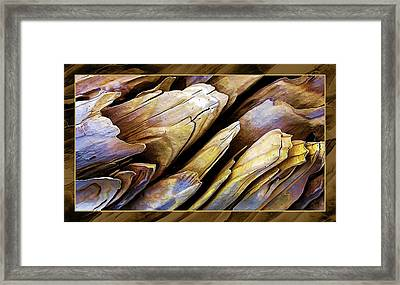 Driftwood Edges Framed Print by ABeautifulSky Photography