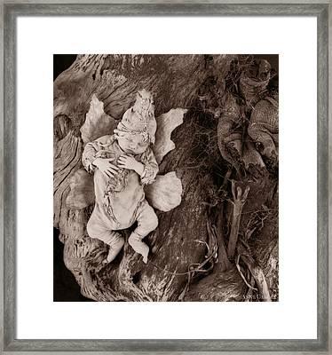 Driftwood Fairy Framed Print