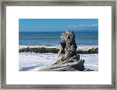 Driftwood In The Surf Framed Print