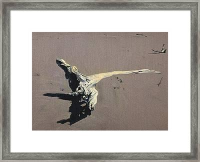 Coastal Driftwood Framed Print