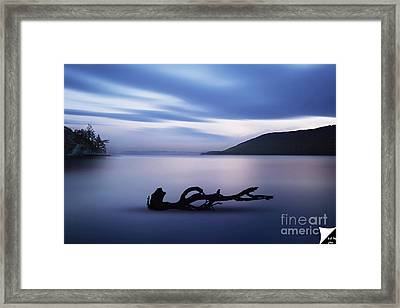 Framed Print featuring the photograph Driftwood by Jim  Hatch
